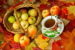 Autumn Tea Party Stockbilder