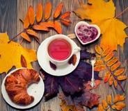 Autumn tea time Stock Image