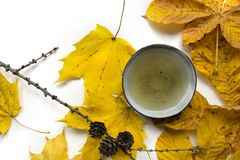 Autumn tea time still life closup on white background. Bright autumn tea ceremony still life cup of tea closup on white background Stock Photography