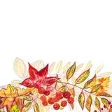 Autumn template background. Seasonal illustrations.web banner template.watercolor illustration. Autumn template background. Seasonal illustrations.web banner royalty free illustration