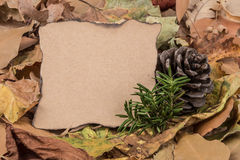 Autumn template with dried leafs Royalty Free Stock Photo