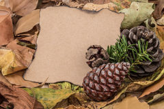 Autumn template with dried leafs Royalty Free Stock Photography