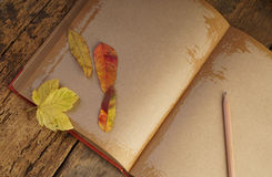 Autumn template with dried leafs and notebook Royalty Free Stock Photos