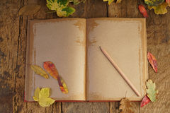 Autumn template with dried leafs and notebook Royalty Free Stock Images