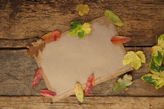 Autumn template with dried leafs and notebook Stock Photos