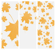 Autumn template flyer or invitation Royalty Free Stock Photos