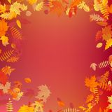 Autumn template layout decorate with leaves. EPS 10 stock illustration