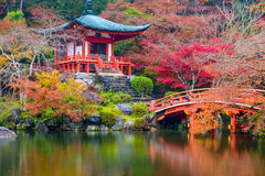 Autumn Temple in Japan Royalty Free Stock Photography