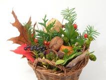 Autumn tendency Royalty Free Stock Photo