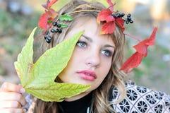Autumn tenderness Stock Image