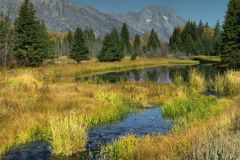 Autumn In The Tetons Stock Image