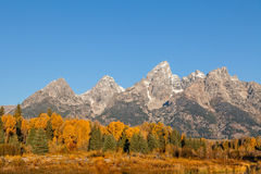 Autumn in the Tetons Royalty Free Stock Photos