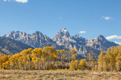 Autumn in the Tetons Royalty Free Stock Image