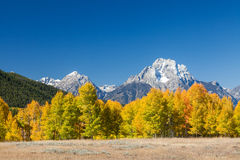 Autumn in the Tetons Stock Photography