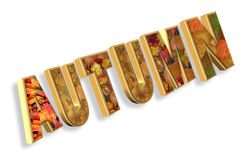 Autumn text 3D stock photography