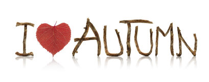 "Autumn Text. Letters made from old wooden branches and a red autumn linden leaf heartshaped, forming the text: ""I Love Autumn"",  on a white background Royalty Free Stock Photography"
