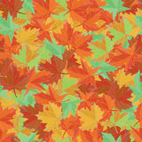 Autumn textile vector. Maple leaf seamless pattern. Foliage background. Royalty Free Stock Image