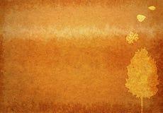 Autumn texture Stock Photo