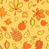 Autumn Texture Background Stock Image