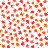 Autumn texture. Seamless pattern with momiji leaves. Stock Photo