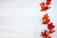 Autumn Thanksgiving Background photos libres de droits