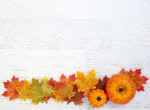 Autumn Thanksgiving Background fotografia stock
