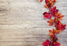 Autumn Thanksgiving Background Immagine Stock Libera da Diritti