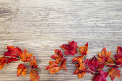 Autumn Thanksgiving Background photos stock