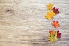 Autumn Thanksgiving Background Arkivfoto