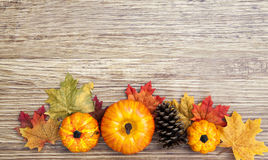 Autumn Thanksgiving Background Royaltyfri Foto