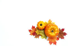 Autumn Thanksgiving Background Royaltyfri Bild