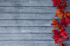 Autumn Thanksgiving Background Fotografia de Stock Royalty Free