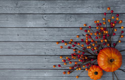 Autumn Thanksgiving Background Arkivfoton