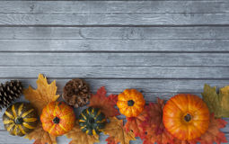 Autumn Thanksgiving Background Arkivbild