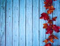 Autumn Thanksgiving Background Fotos de archivo libres de regalías