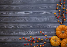 Autumn Thanksgiving Background Fotos de Stock