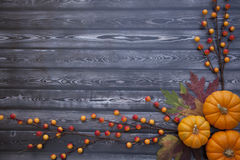 Autumn Thanksgiving Background Fotografie Stock Libere da Diritti