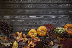 Autumn Thanksgiving Background Royalty-vrije Stock Afbeeldingen
