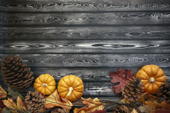 Autumn Thanksgiving Background Imagem de Stock