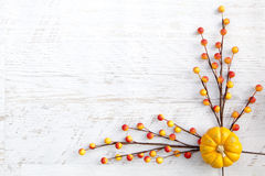 Autumn Thanksgiving Background Imagens de Stock
