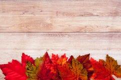 Autumn Thanksgiving Background Foto de Stock Royalty Free