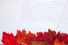 Autumn Thanksgiving Background Fotos de Stock Royalty Free