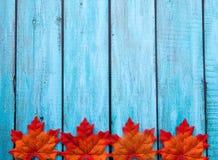 Autumn Thanksgiving Background Fotografia de Stock