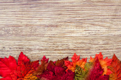 Autumn Thanksgiving Background Fotografía de archivo libre de regalías
