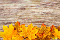 Autumn Thanksgiving Background Arkivfoto