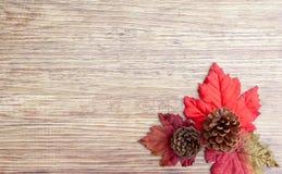 Autumn Thanksgiving Background Foto de Stock