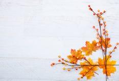 Autumn Thanksgiving Background Foto de archivo libre de regalías