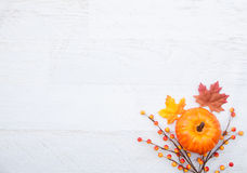 Autumn Thanksgiving Background Fotografia de Stock Royalty Free