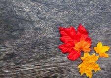 Autumn Thanksgiving Background Imagem de Stock
