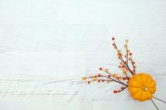 Autumn Thanksgiving Background photographie stock libre de droits